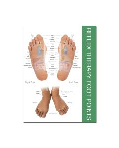 "Reflex Point Foot and Hand Chart (8-1/2"" x 11"")"