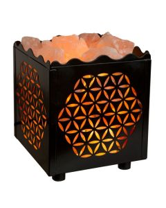 Cube Flower Lamp Basket with Himalayan Salts